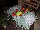 centrotavola natalizio 004