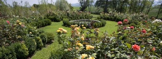 Giardino all'italiana Dimora 800esca Vercellese